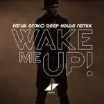 Avicii - Wake Me Up (Single) 2013