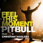 Pitbull - Feel This Moment (Single) 2013