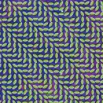 animal-collective-merriweather-post-pavilion-2009