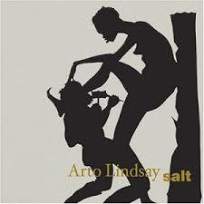 Arto Lindsay - Salt (2004)